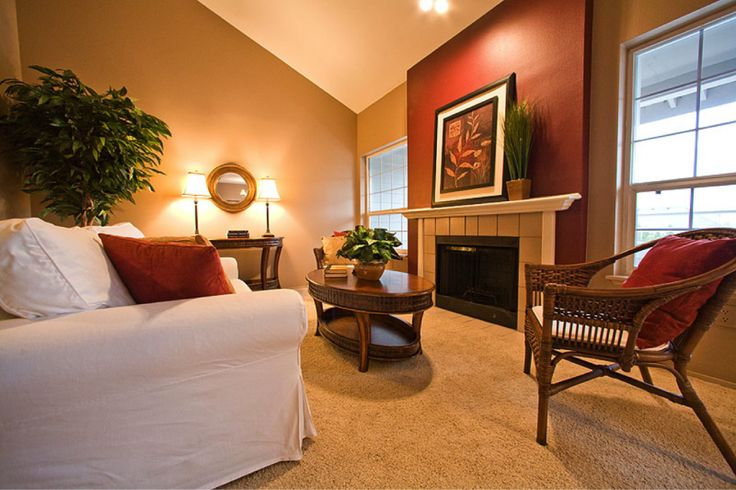 Living room light caramel color new livingroom ideas for Living room accent wall ideas
