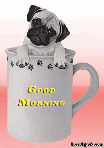 Image result for good morning blingee dogs