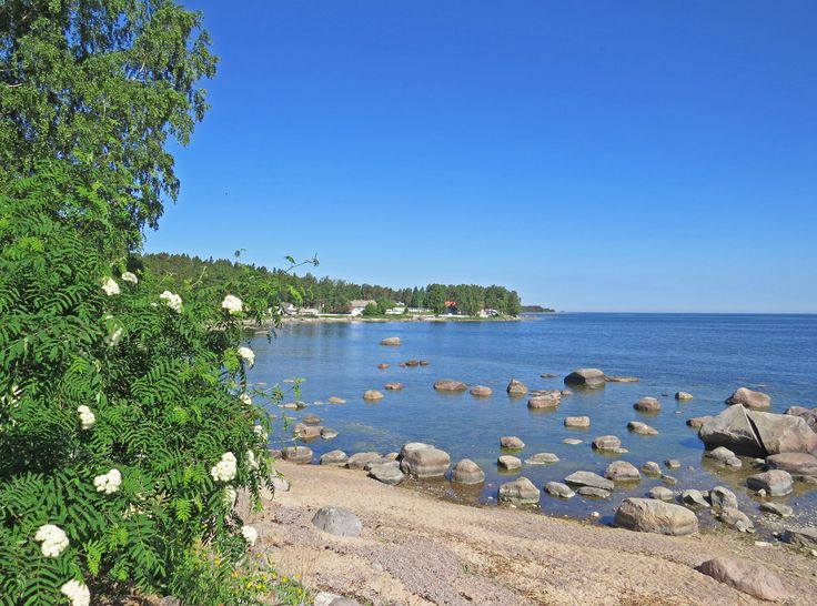 Enjoy a visit to Lahemaa National Park, east of Tallinn, to experience the beautiful Baltic coastline - Photo by David Craig, Group Escort