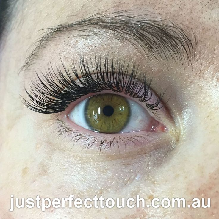 how to put on your own eyelash extensions