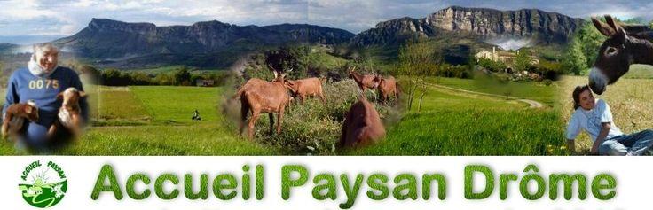 ACCUEIL PAYSAN DROME ferme, hébergement, soin des animaux