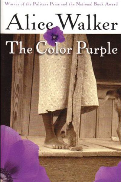 Bookshelf: Our 5 Favorite Banned Books   The Color Purple