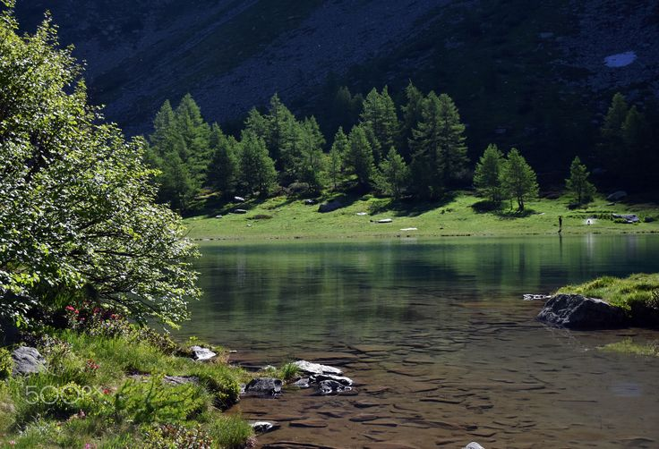 Lac d'Arpy. - the fir trees, on the lake, lit by the first light of day