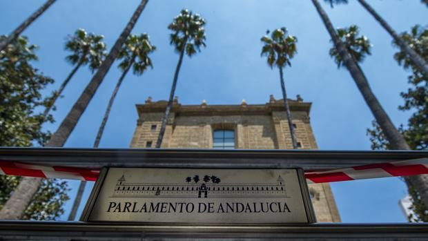 Palmeras frente al Parlamento andaluz