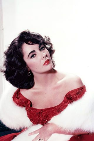 Happy Birthday, Elizabeth Taylor! We rounded up the icon's most glam moments in photos, here: