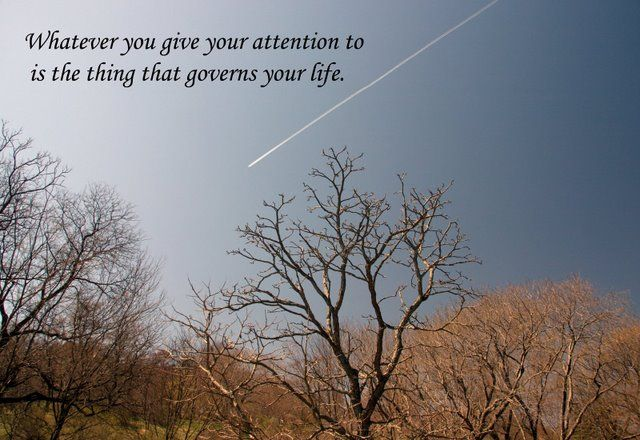 """"""" whatever you give your attention to """".... Quotations 