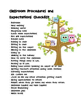 Owl Classroom Procedures and Expectations Checklist *FREEBIE