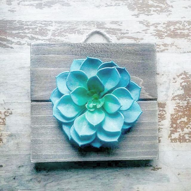 I 💙 this cutie so much! You can customise it with other flowers on it. 😄👏 Send your request to @enchantedwillowtree 💚 www.enchantedwillowtree.etsy.com  #homedecor #wallhanging #succulentlove #rusticdecor #moderndecor #walldecor #momdaymorning #smallbiz #mycreativebiz #makersgonnamake #onmywall #hellosmallshop #creativelifehappylife #handsandustle #tnchustler #creativeentrepeneur #girlboss #brandchat #creativepreneur #socialbusiness #designer #etsysellers #smallshop #graphics #creative