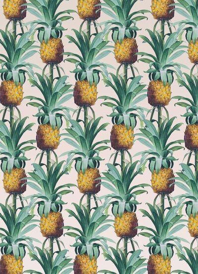 adelphi pineapple wallpaper - photo #9