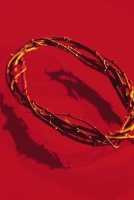 Como hacer una corona de espinas para una obra de teatro de Pascuas | eHow en Español