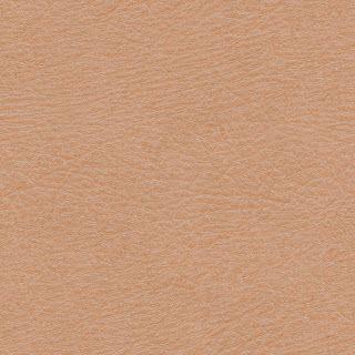 Tileable Human Skin Texture #3