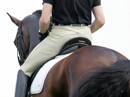 Oefeningen voor een goede houding en zit - Horses.nl