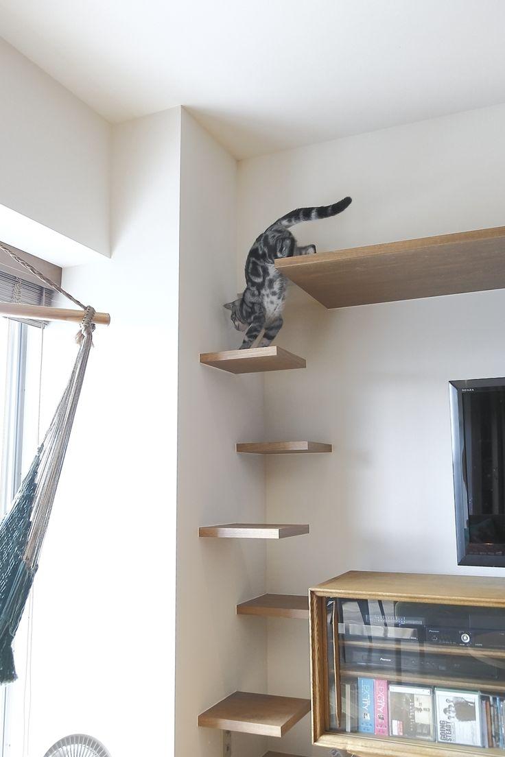 ミッドセンチュリー×キャットウォークで「子猫も遊べる」レトロモダン空間に!