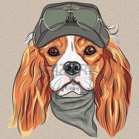 vector Hipster perro rojo Cavalier King Charles Spaniel raza en la tapa y pantalones de color caqui corbata y gafas photo