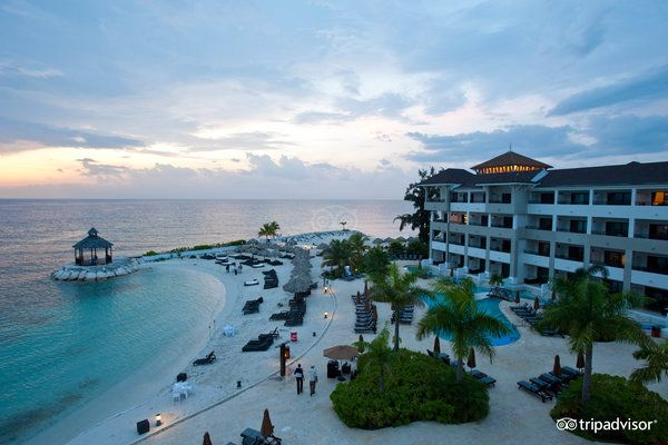 Secrets Wild Orchid Montego Bay (Jamaica) - Resort (All-Inclusive) Reviews - TripAdvisor