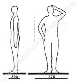 position-debout-2