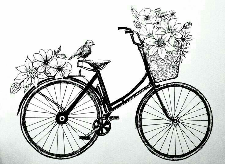 Cycle Bike Art With Images Vintage Drawing Bicycle Drawing