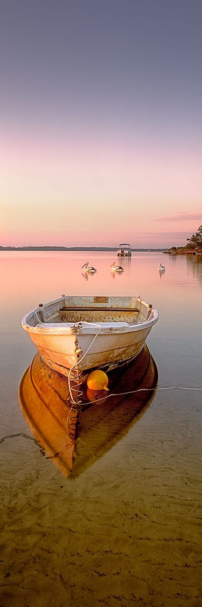 Drei Pelikane schwimmen vorbei und altes Beiboot in den stillen Gewässern der P…
