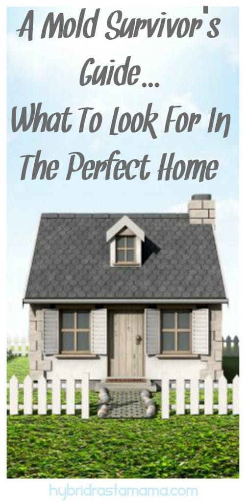 What To Look For In The Perfect Home Living Environment