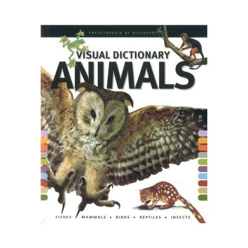 D C B Ab De on animal unit first grade worksheets