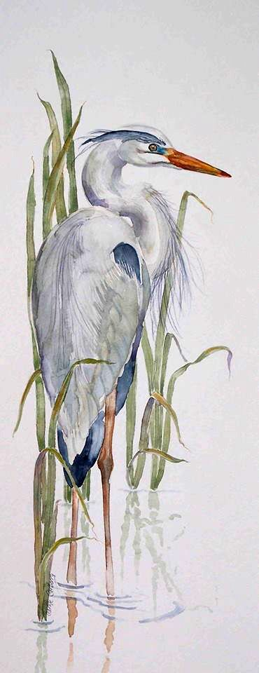 Fiskehejre - Great Blue Heron Great Reads from Exceptional Authors at http://wildbluepress.com. True crime, thrillers, mystery and business productivity books.                                                                                                                                                      More