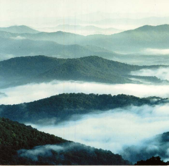 Best Places To Hike Boone Nc: 83 Best Boone Scenery Images On Pinterest