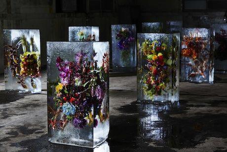 ICED FLOWERS S1