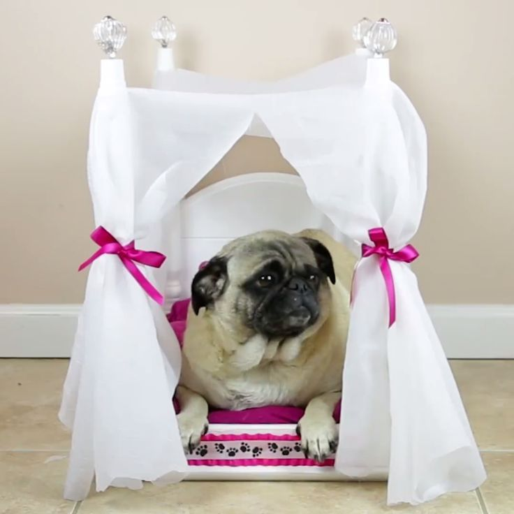 Give your pup the luxe bed she deserves!