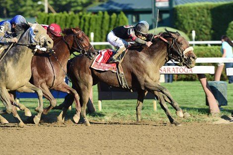 Stronach Stables' Ontario-bred Shaman Ghost, the 2015 Queen's Plate winner, dove to victory in a four-horse photo Sept. 3 and nosed out Mubtaahij to steal the $600,000 Woodward Stakes (gr. I) Sept. 3, 2016 at Saratoga Race Course.