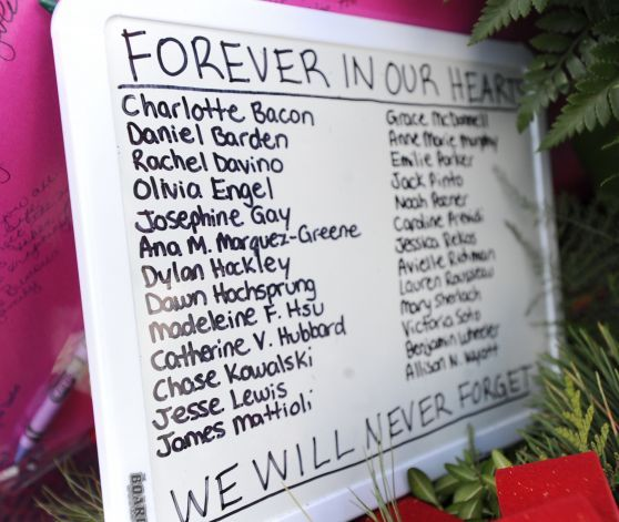 School Shootings 2014: Best 25+ Sandy Hook Ideas Only On Pinterest