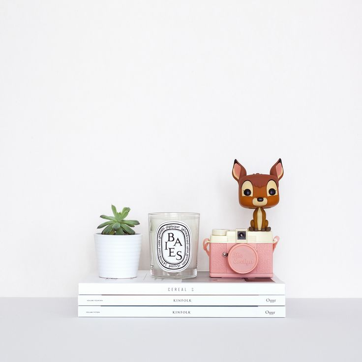 Pink Diana camera, Kinfolk, succulent and kitsch deer