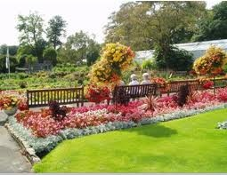 Singleton Botanical gardens in Swansea are a very relaxing place to relax and enjoy the huge variety of flowers and plants.