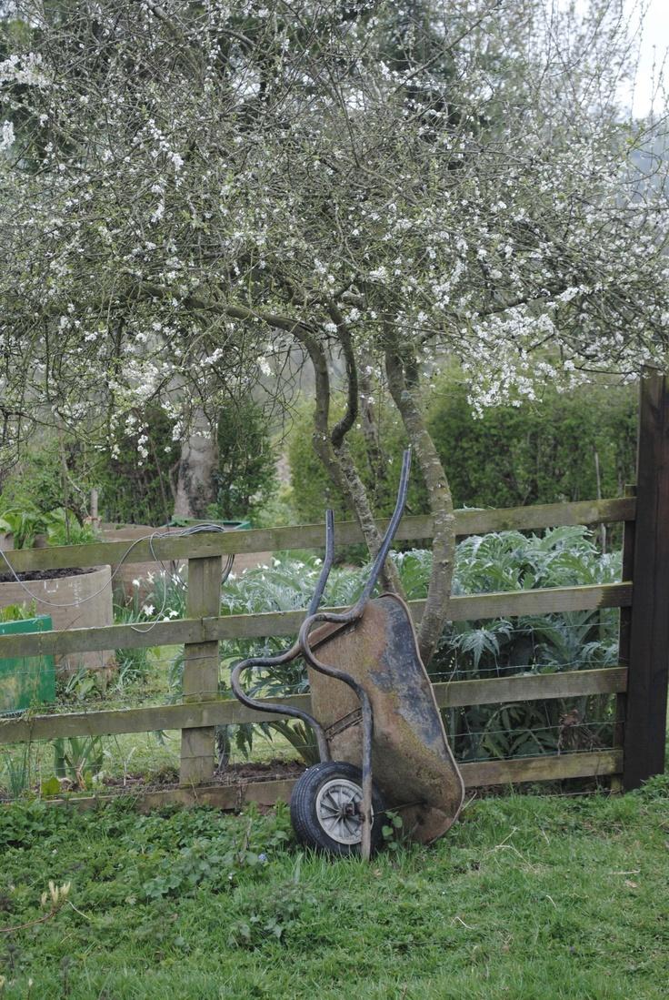 A well loved wheelbarrow
