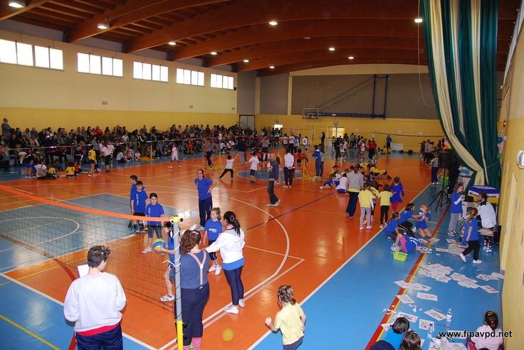 La Festa di Carnevale del minivolley, palestra comunale di Salboro, via Ponchia a Padova
