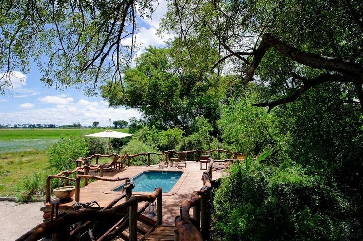 #Tubu Tree's pool has an enviable view - #Okavango Delta, Botswana - a luxury safari camp