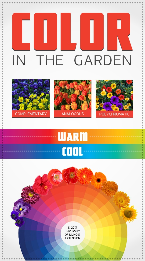 a guide to color in the garden from university of illinois extension - Flower Garden Ideas Illinois