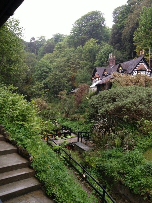 Shanklin Chine ~ Isle of Wight, England