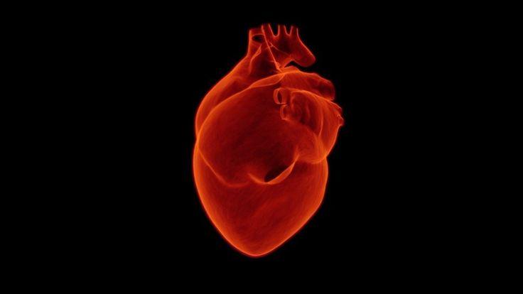 Las células madre del cordón umbilical son prometedoras como tratamiento para la insuficiencia cardiaca