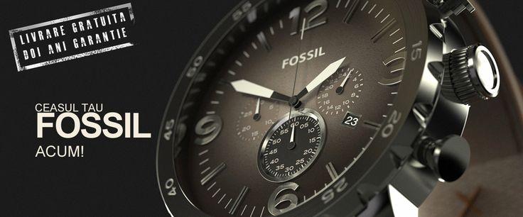 Ceasuri Fossil Barbatesti