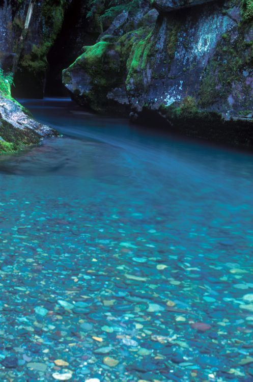 The blue waters of Glacier National Park's creeks!  -  Montana