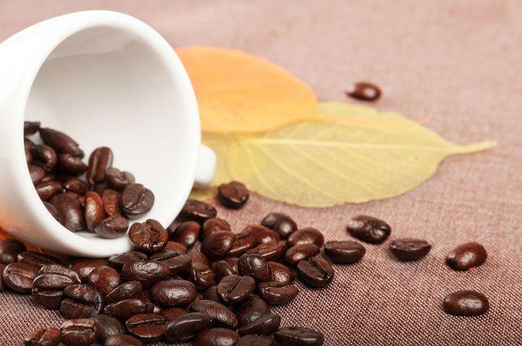 El café está presente a diario en nuestras vidas, pero también puede ser muy útil en la belleza y el hogar. ¿Conocías estos usos desconocidos del café?