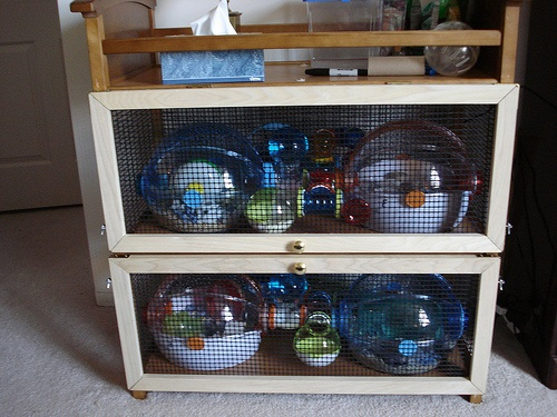 17 Best Images About Ovo Hamster Cage On Pinterest The