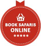 Book excursions and activities - Lapland Safaris