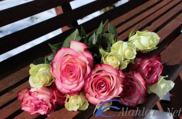 تفسير رؤية باقة الورد في المنام لابن سيرين Rose Bouquet Rose White Roses