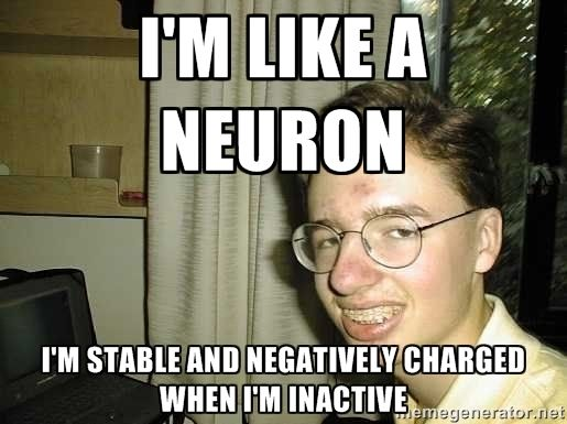 Neuron Unit 3a