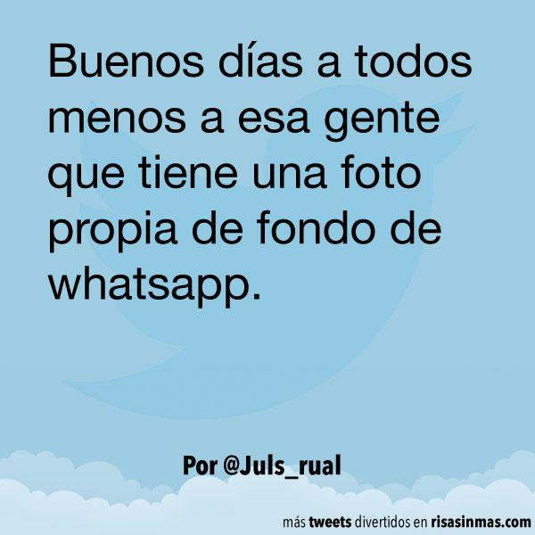 Foto propia de fondo de whatsapp. #humor #risa #graciosas #chistosas #divertidas