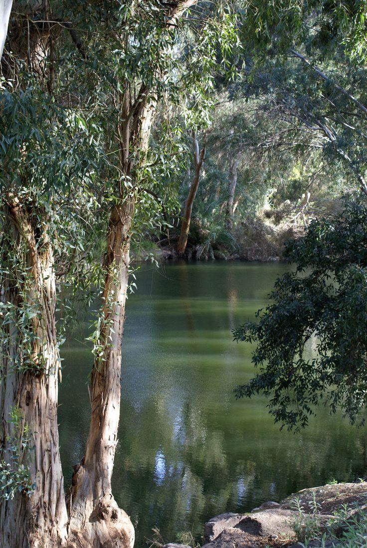 "River Jordan Israel  "" A fish glides, like a shadow, just beneath the surface...""  http://media-cache-ec0.pinimg.com/originals/95/91/e9/9591e95ebbd6d263ff815f49bfdec363.jpg"