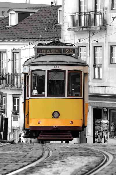 One of the famous tourist attraction in Lisbon is the historical tram 28. It is usually full with tourists and very difficult to get on but gives you an unforgettable experience if you just see it in Lisbon.