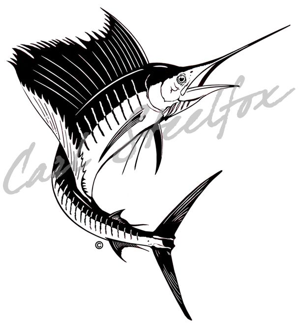 how to draw a swordfish
