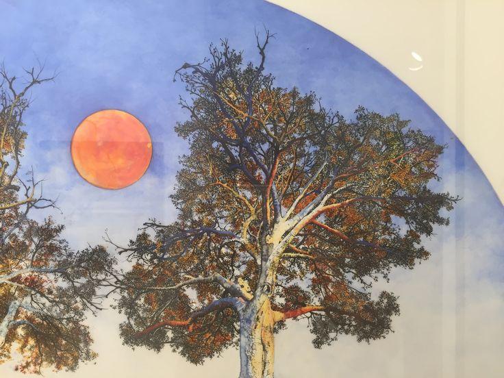 Rachel Pease, Afterlight, 2014 Beaux Arts des Ameriques beauxartsdesameriques.com Robert Laliberte.